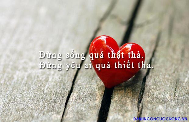 Tổng hợp những câu nói hay nhất về tình yêu đôi lứa